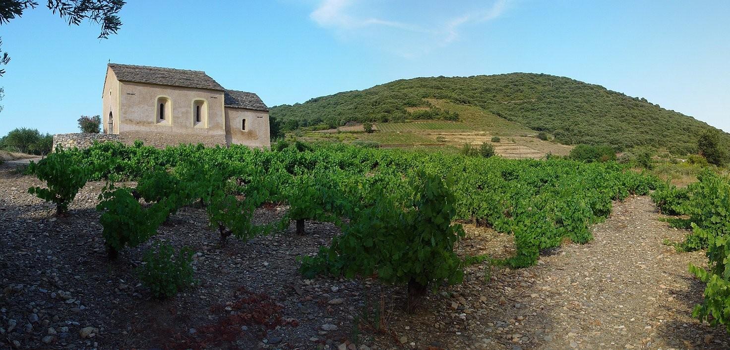 Domaine Vieux Chai
