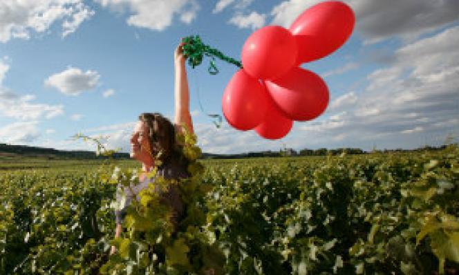 oenotourisme : les vignerons independants lancent des weekend dans le vignoble