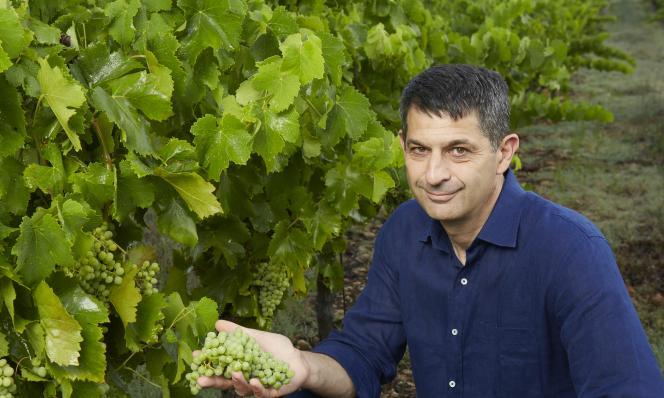 Thomas Montagne président des Vignerons Indépendants