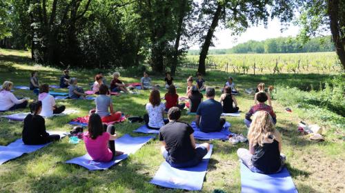 Cours de yoga en plein air aux pieds des vignes