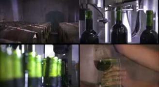 Les Salons des vignerons indépendants